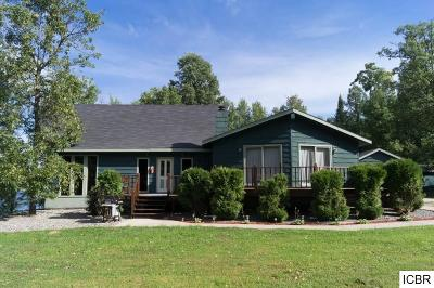 Itasca County Single Family Home For Sale: 39035 County Rd 336