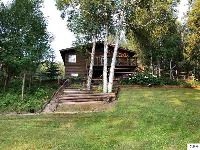 Single Family Home For Sale: 17858 Little McCarthy Lake Rd
