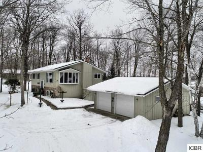 Single Family Home For Sale: 23488 Stark Rd