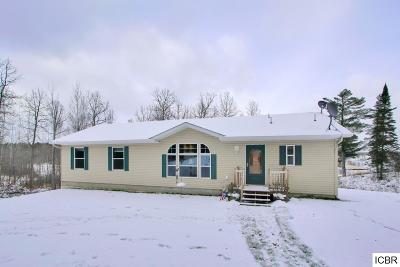 Grand Rapids Single Family Home For Sale: 21594 Keyview Dr
