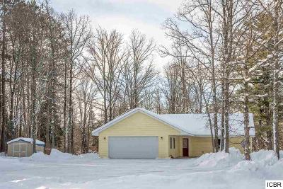 Grand Rapids Single Family Home For Sale: 18141 River Rd
