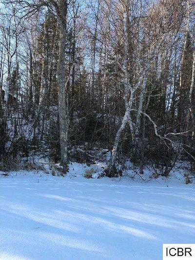 Chisholm, Hibbing Residential Lots & Land For Sale: W Island View Dr