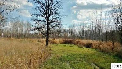 Itasca County Residential Lots & Land For Sale: 22999 County Rd 434