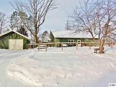 Grand Rapids Single Family Home For Sale: 902 SW 4th Ave