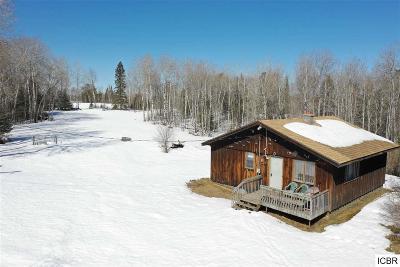 Chisholm, Hibbing Residential Lots & Land For Sale: 6821 Barrett Rd