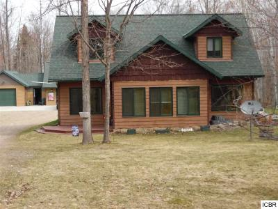 Grand Rapids Single Family Home For Sale: 28556 Norberg Dr