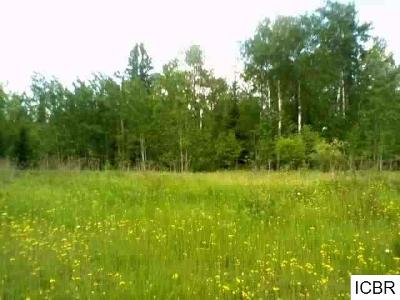 Chisholm, Hibbing Residential Lots & Land For Sale: River View Dr