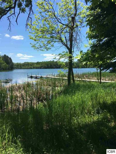 Itasca County Residential Lots & Land For Sale: 24771 Blue Heron Hdwy