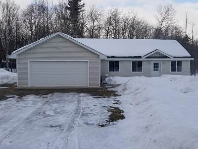 Grand Rapids Single Family Home For Sale: 34591 Unger Dr