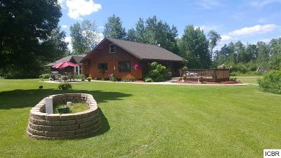 Grand Rapids Single Family Home For Sale: 31325 Hwy 38