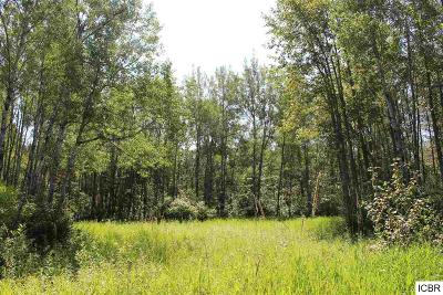 Itasca County Residential Lots & Land For Sale: County Rd 236