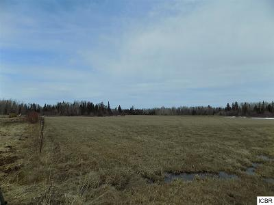 Bigfork MN Residential Lots & Land For Sale: $48,000