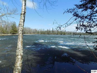 Bigfork MN Residential Lots & Land For Sale: $87,500