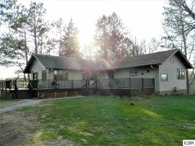 Itasca County Single Family Home For Sale: 26107 Pine Trl