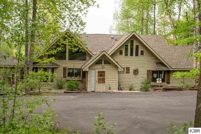 Grand Rapids Single Family Home For Sale: 29482 Robinson Rd