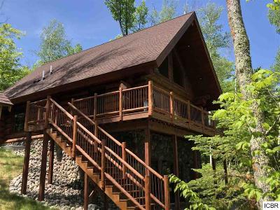Itasca County Single Family Home For Sale: 38374 Sissebakwet Shore Rd