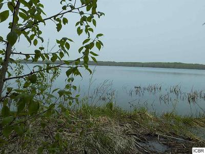 Deer River MN Residential Lots & Land For Sale: $40,000
