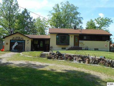 Itasca County Single Family Home Temp Not Avail To Show: 30247 N Mallard Point Rd