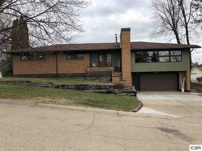 Hibbing, Chisholm Single Family Home For Sale: 918 N Central Ave