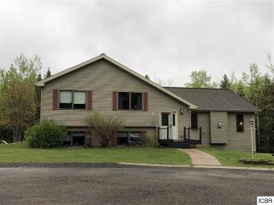 Hibbing, Chisholm Single Family Home For Sale: 6070 Long Lake Rd