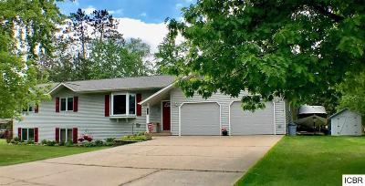 Grand Rapids Single Family Home For Sale: 1220 SW 5th St