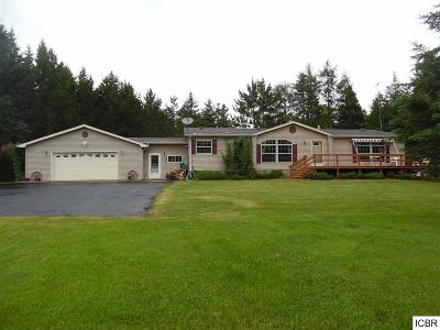 Single Family Home For Sale: 55154 County Rd 4