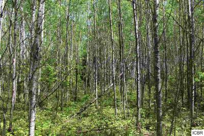 Chisholm, Hibbing Residential Lots & Land For Sale: County Rd 444