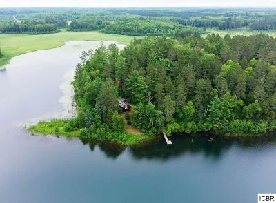 Itasca County Single Family Home For Sale: 30745 Peaceful Point Rd