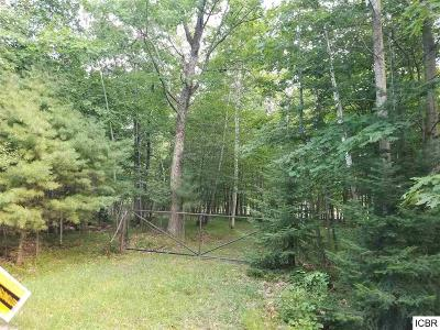 Itasca County Residential Lots & Land For Sale: Pine St