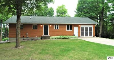 Single Family Home For Sale: 41269 County Rd 311