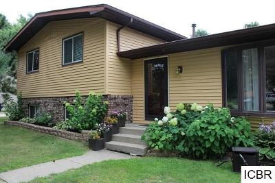 Itasca County Single Family Home For Sale: 1007 NE 5th Ave
