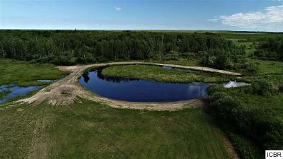 Itasca County Residential Lots & Land For Sale: Hwy 46
