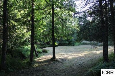Itasca County Residential Lots & Land For Sale: 41147 County Rd 19