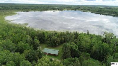 Itasca County Single Family Home For Sale: 67450 Busties Lake Access