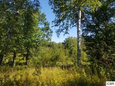 Itasca County Residential Lots & Land For Sale: County Rd 336