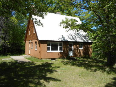 Perham Single Family Home For Sale: 39872 460th Ave.