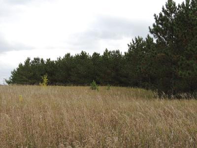Frazee Residential Lots & Land For Sale: 12885 Stilke Lake Rd. #11