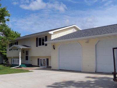 Detroit Lakes Single Family Home For Sale: 609 Broadway Ave.