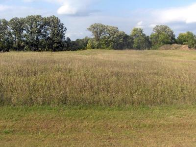 Frazee Residential Lots & Land For Sale: Carefree Lane