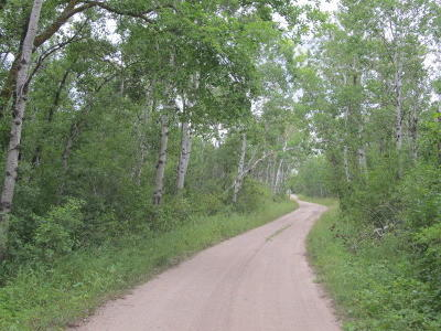 Hawley Residential Lots & Land For Sale: Tbd Lot 8 12th Ave. S