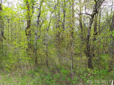 Ottertail Residential Lots & Land For Sale: 43xxx Round Lake Dr. #6