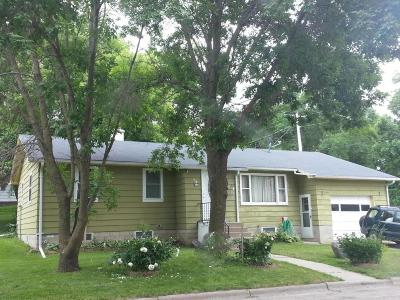 Pelican Rapids Single Family Home For Sale: 113 2nd Street NW