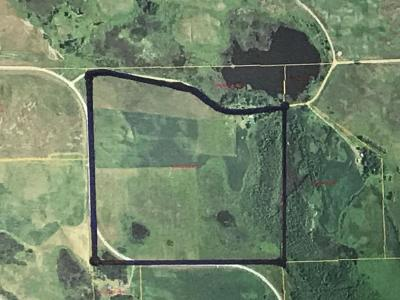 Pelican Rapids Residential Lots & Land For Sale: 17366 520th St.