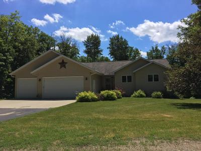 Detroit Lakes Single Family Home For Sale: 10152 Maple Lane