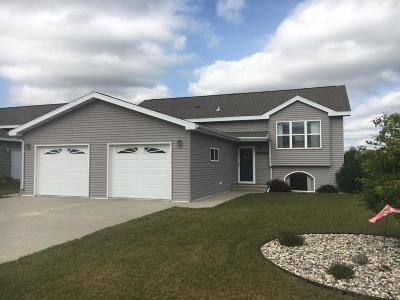 Detroit Lakes Single Family Home For Sale: 1130 Riverview