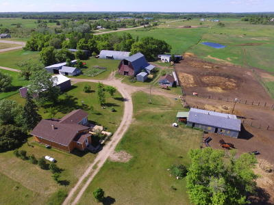 Frazee Single Family Home For Sale: 11447 Hwy 29
