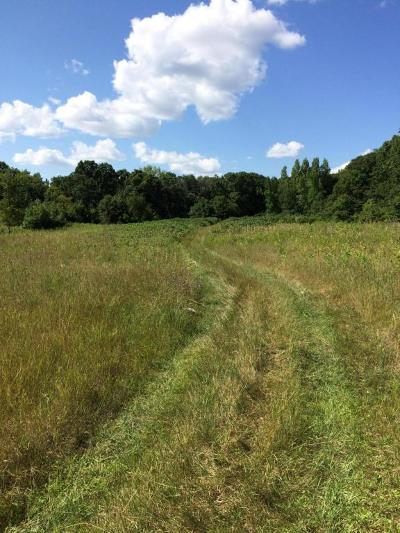 Lake Land For Sale: 513th St.