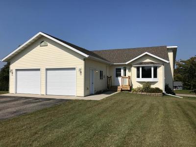 Detroit Lakes Single Family Home For Sale: 1179 Long Bridge Cir.