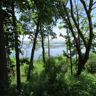 Lake Land For Sale: Lots Abc 43 Ac Backlot Co Hwy 14