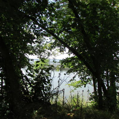 Lake Land For Sale: Lots Abcf 43 Ac Backlot Co Hwy 14